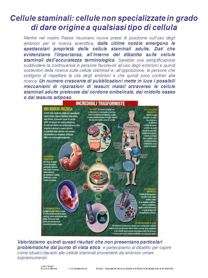 Liceo Malpighi Scuola di personaIn collaborazione conEuresis - Associazione per la promozione e la diffusione del sapere e del lavoro scientifico Ment