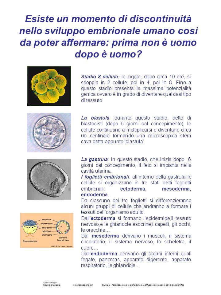 Liceo Malpighi Scuola di personaIn collaborazione conEuresis - Associazione per la promozione e la diffusione del sapere e del lavoro scientifico Esis