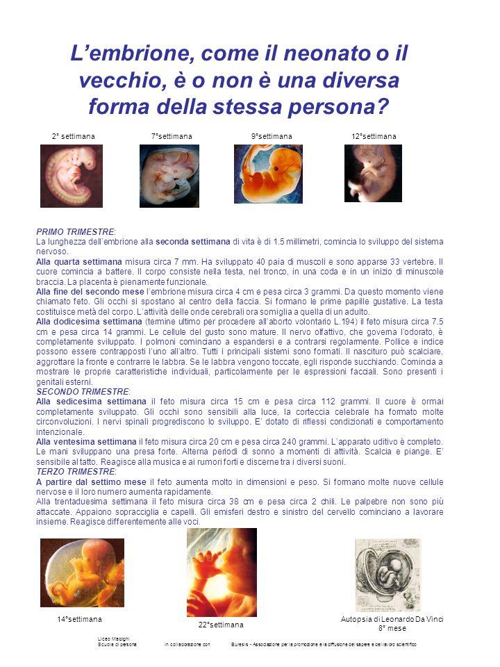 Liceo Malpighi Scuola di personaIn collaborazione conEuresis - Associazione per la promozione e la diffusione del sapere e del lavoro scientifico Lemb