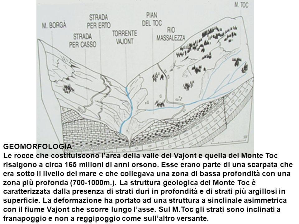 GEOMORFOLOGIA Le rocce che costituiscono larea della valle del Vajont e quella del Monte Toc risalgono a circa 165 milioni di anni orsono. Esse erano