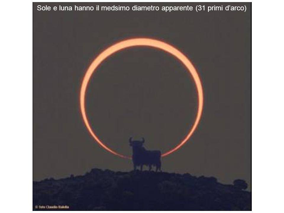 Sole e luna hanno il medsimo diametro apparente (31 primi darco)