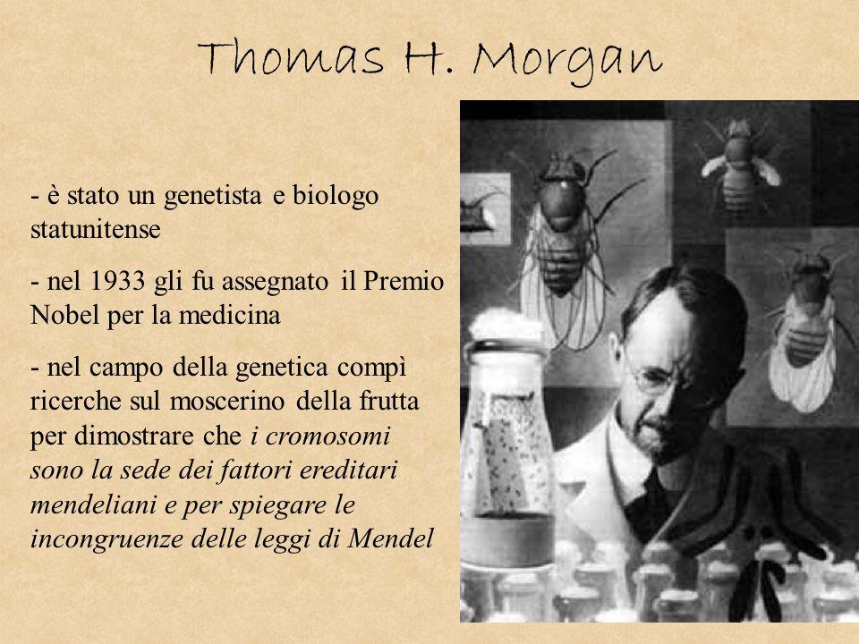Thomas H. Morgan - è stato un genetista e biologo statunitense - nel 1933 gli fu assegnato il Premio Nobel per la medicina - nel campo della genetica