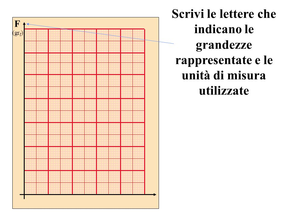 Scrivi le lettere che indicano le grandezze rappresentate e le unità di misura utilizzate F (gr f ) L (cm)