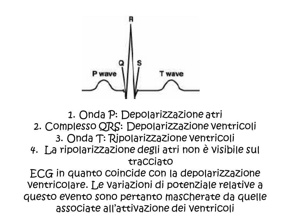 1.Onda P: Depolarizzazione atri 2.Complesso QRS: Depolarizzazione ventricoli 3.Onda T: Ripolarizzazione ventricoli 4. La ripolarizzazione degli atri n