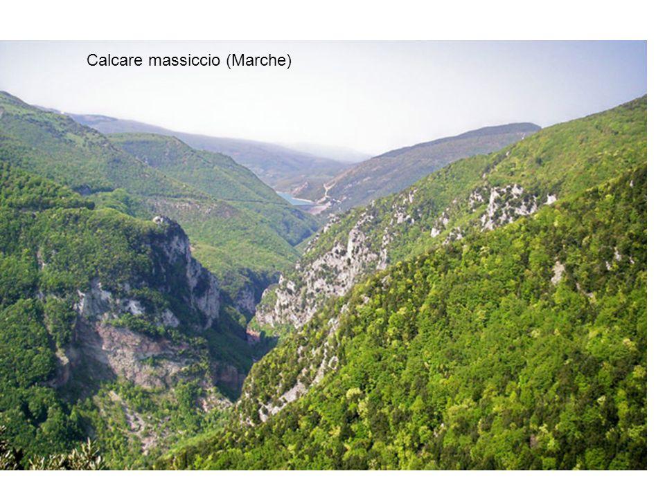 Calcare massiccio (Marche)