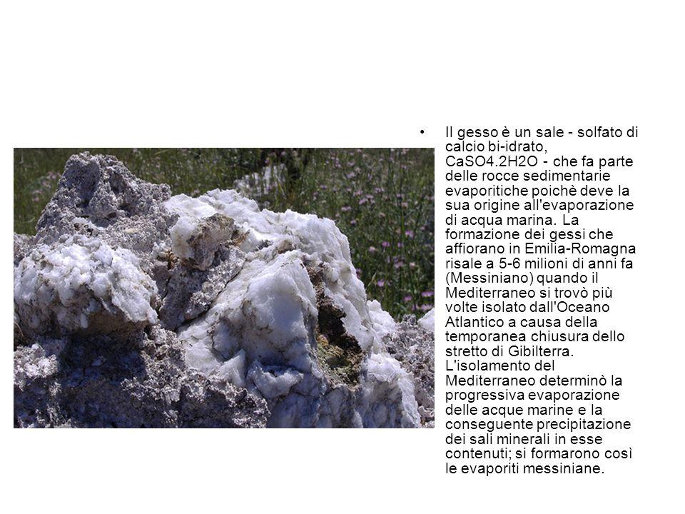 Il gesso è un sale - solfato di calcio bi-idrato, CaSO4.2H2O - che fa parte delle rocce sedimentarie evaporitiche poichè deve la sua origine all'evapo