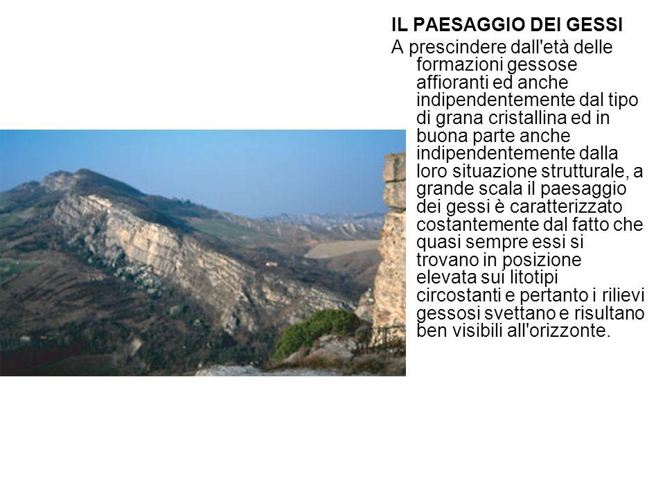 IL PAESAGGIO DEI GESSI A prescindere dall'età delle formazioni gessose affioranti ed anche indipendentemente dal tipo di grana cristallina ed in buona