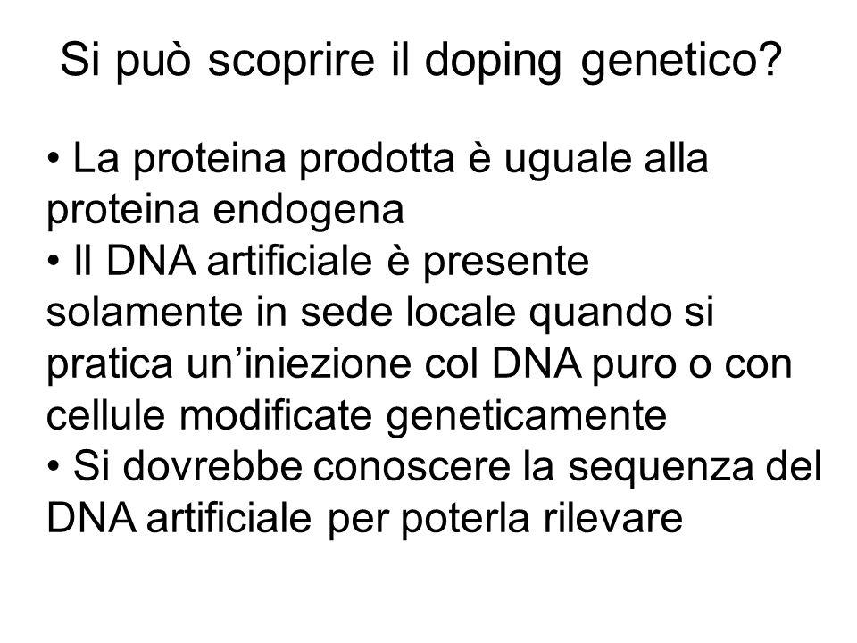 La proteina prodotta è uguale alla proteina endogena Il DNA artificiale è presente solamente in sede locale quando si pratica uniniezione col DNA puro