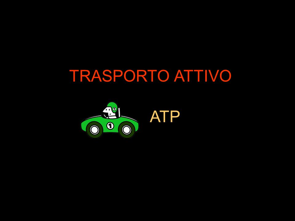 TRASPORTO ATTIVO ATP