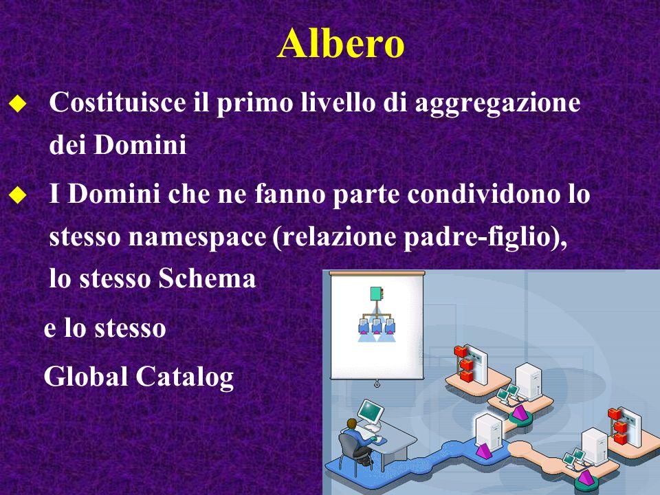 Albero Costituisce il primo livello di aggregazione dei Domini I Domini che ne fanno parte condividono lo stesso namespace (relazione padre-figlio), l