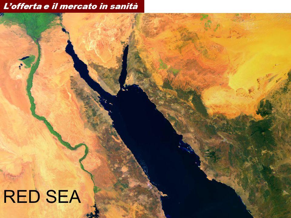 RED SEA Lofferta e il mercato in sanità