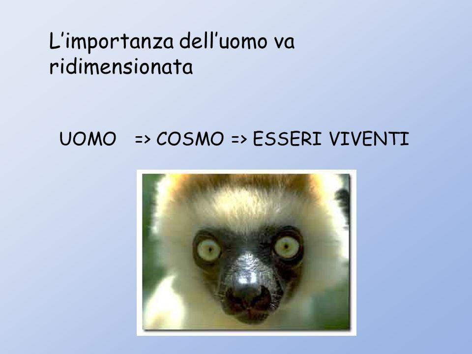 Limportanza delluomo va ridimensionata UOMO => COSMO => ESSERI VIVENTI