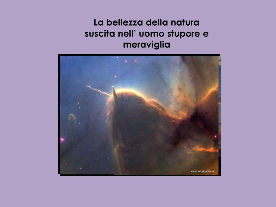 Chi di noi non ha mai provato un senso di meraviglia e smarrimento di fronte a un cielo stellato o a un arcobaleno?
