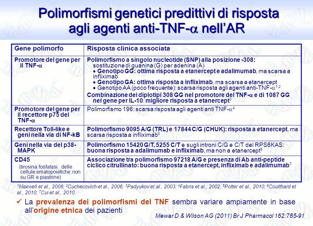 Gene polimorfoRisposta clinica associata Promotore del gene per il TNF- Polimorfismo a singolo nucleotide (SNP) alla posizione -308: sostituzione di g