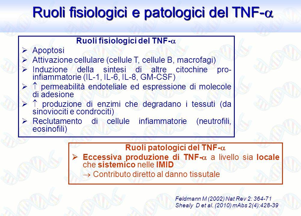 Feldmann M (2002) Nat Rev 2: 364-71 Shealy D et al. (2010) mAbs 2(4):428-39 Ruoli patologici del TNF- Eccessiva produzione di TNF- a livello sia local
