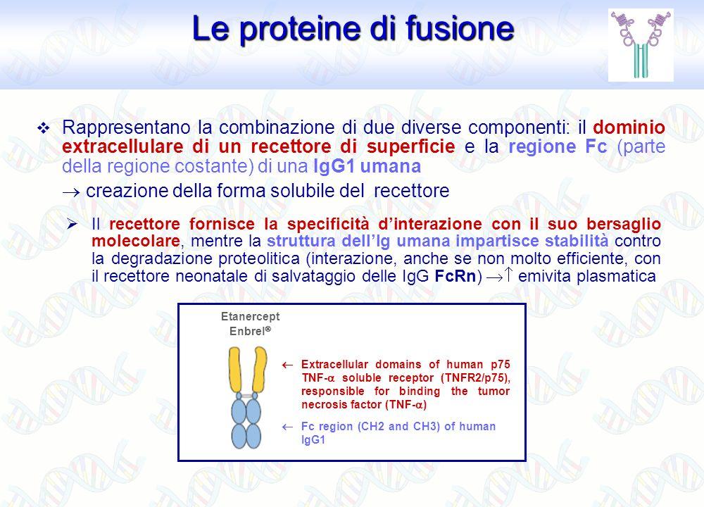 Gli agenti anti-TNF- Gli agenti anti-TNF- Etanercept - Enbrel (Wyeth Lederle) Certolizumab pegol - Cimzia ® (UCB Pharma) Single Fab fragment Infliximab - Remicade (Schering-Plough) Adalimumab - Humira ® (Abbott) Golimumab - Simponi ® (Schering- Plough) Sebbene tutti abbiano il TNF- come bersaglio, la struttura chimica, le proprietà farmacocinetiche e farmacodinamiche (efficacia/sicurezza clinica) di questi farmaci sono diverse Farmacocinetica e penetrazione nei tessuti infiammati Interazioni farmaco-TNF-, specificità e valenza Struttura ed effetti della regione Fc Immunogenicità (induzione di Ab neutralizzanti anti-farmaco) Specificità di malattia (efficacia clinica); tossicità Lesatta rilevanza biologica e clinica di queste differenze non è del tutto chiara, ma una sua migliore comprensione potrebbe permettere lottimizzazione della scelta del farmaco allinterno della classe degli agenti anti-TNF- per un dato paziente
