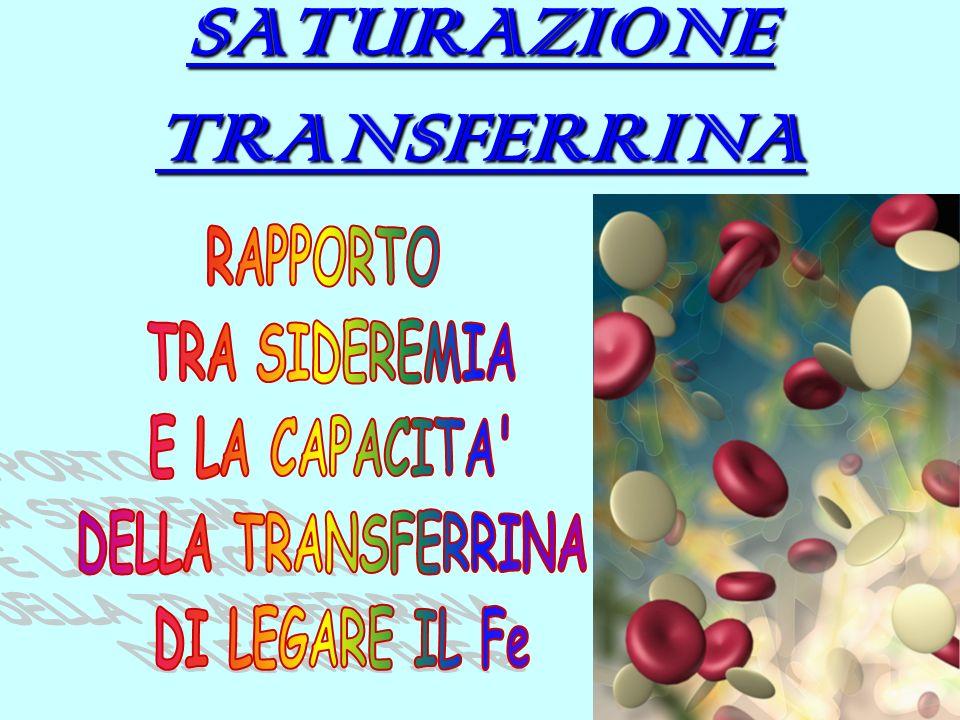 SATURAZIONE TRANSFERRINA