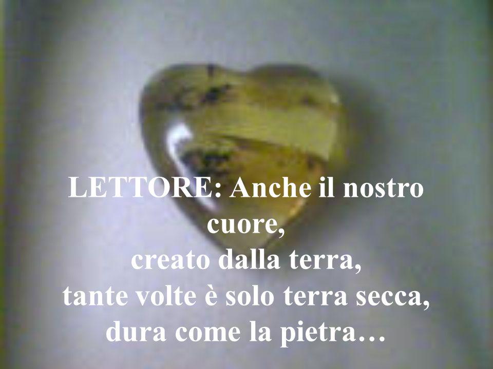 LETTORE: Anche il nostro cuore, creato dalla terra, tante volte è solo terra secca, dura come la pietra…