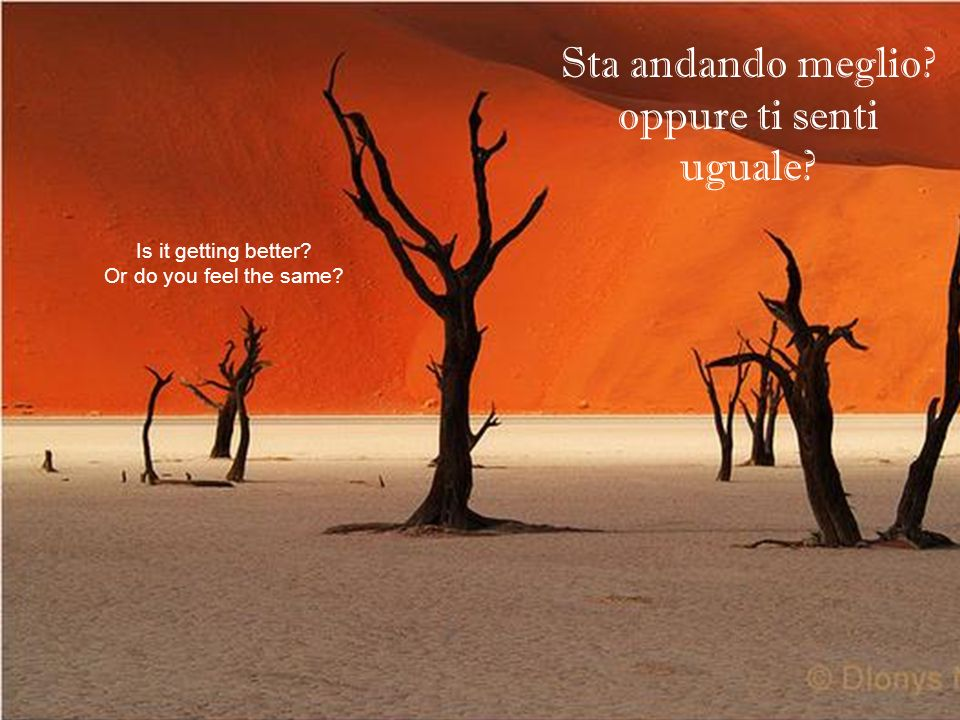 Sta andando meglio? oppure ti senti uguale? Is it getting better? Or do you feel the same?