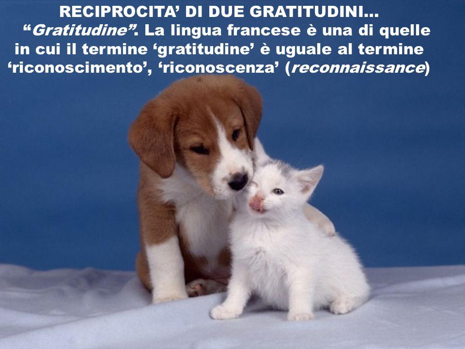 RECIPROCITA DI DUE GRATITUDINI… Gratitudine. La lingua francese è una di quelle in cui il termine gratitudine è uguale al termine riconoscimento, rico