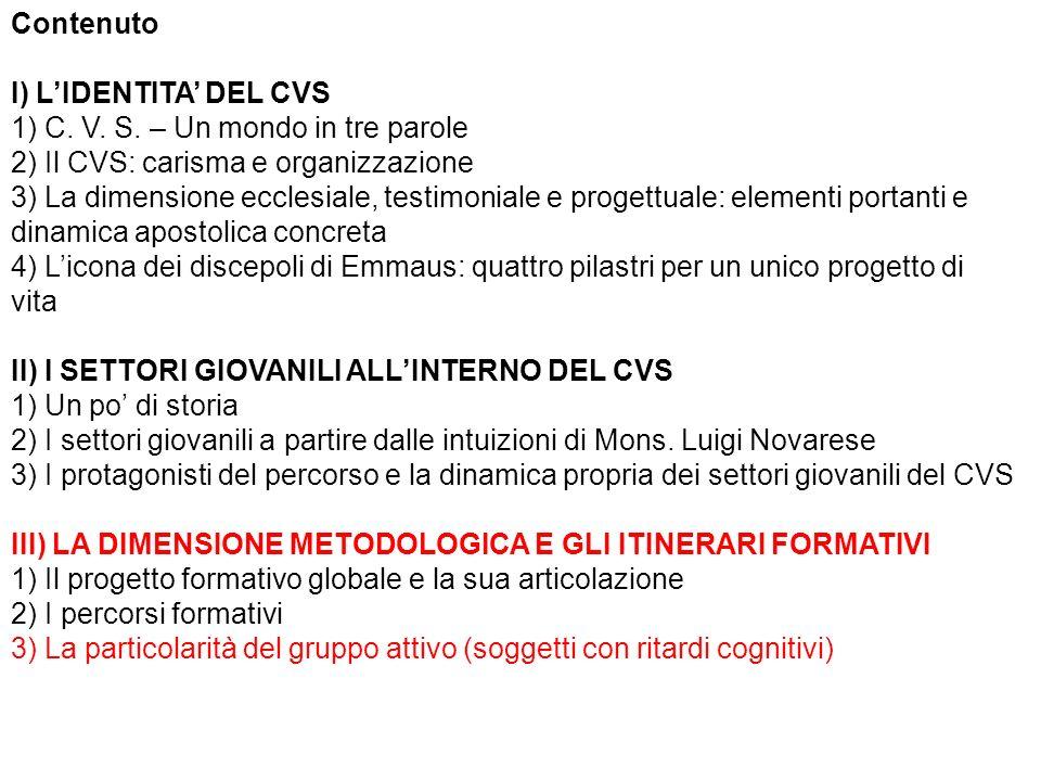 Contenuto I) LIDENTITA DEL CVS 1) C.V. S.