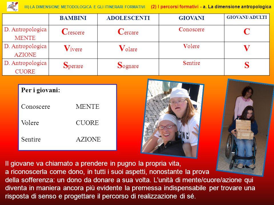 III) LA DIMENSIONE METODOLOGICA E GLI ITINERARI FORMATIVI (2) I percorsi formativi - a.