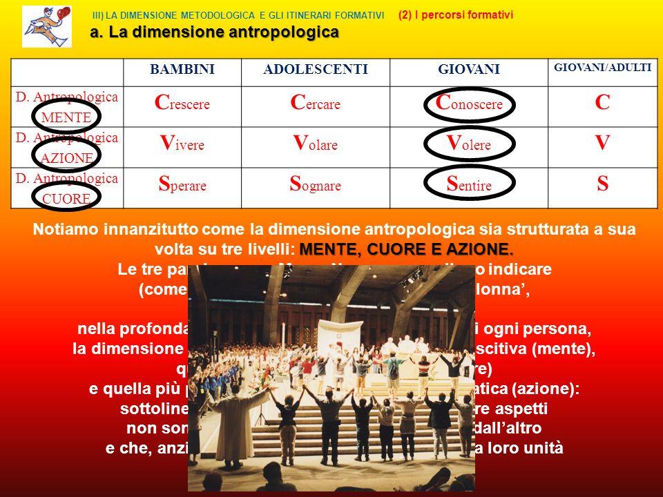 III) LA DIMENSIONE METODOLOGICA E GLI ITINERARI FORMATIVI (2) I percorsi formativi a.