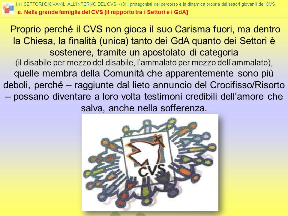 a. Nella grande famiglia del CVS [il rapporto tra i Settori e i GdA] II) I SETTORI GIOVANILI ALLINTERNO DEL CVS - (3) I protagonisti del percorso e la