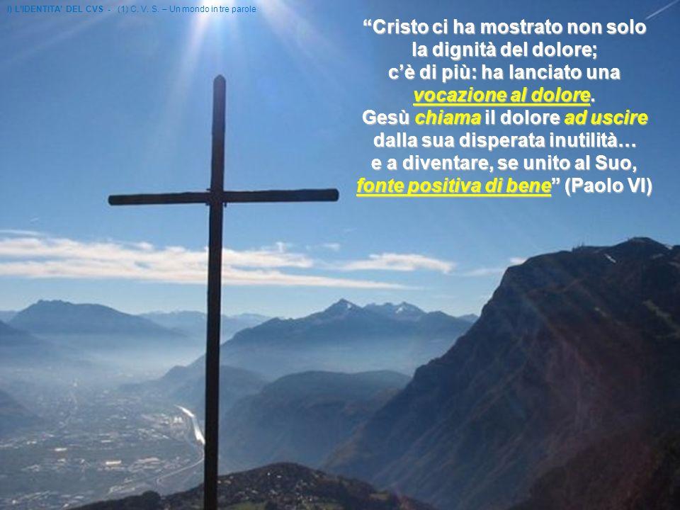 Cristo ci ha mostrato non solo la dignità del dolore; cè di più: ha lanciato una vocazione al dolore.