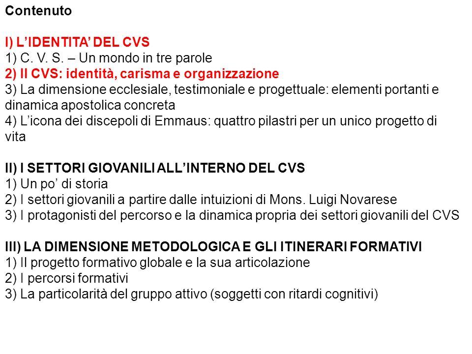 Il CVS (Centro Volontari della Sofferenza) nasce nel 1947, dall intuizione carismatica di Mons.