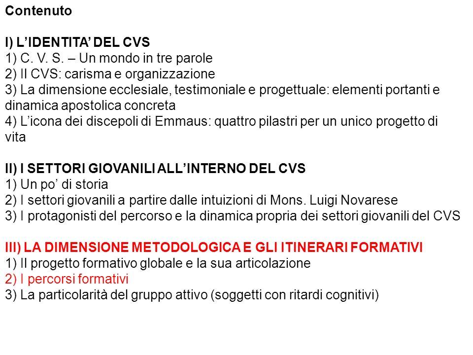 Contenuto I) LIDENTITA DEL CVS 1) C. V. S.