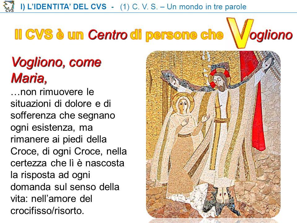 I) LIDENTITA DEL CVS - (1) C. V. S.
