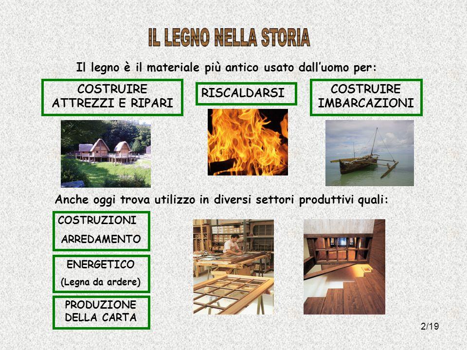 2/19 Il legno è il materiale più antico usato dalluomo per: Anche oggi trova utilizzo in diversi settori produttivi quali: COSTRUZIONI ARREDAMENTO PRO