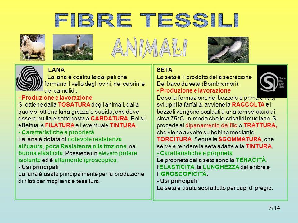 7/14 LANA La lana è costituita dai peli che formano il vello degli ovini, dei caprini e dei camelidi. - Produzione e lavorazione Si ottiene dalla TOSA