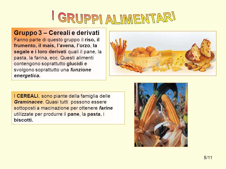 5/11 Gruppo 3 – Cereali e derivati Fanno parte di questo gruppo il riso, il frumento, il mais, lavena, lorzo, la segale e i loro derivati quali il pan