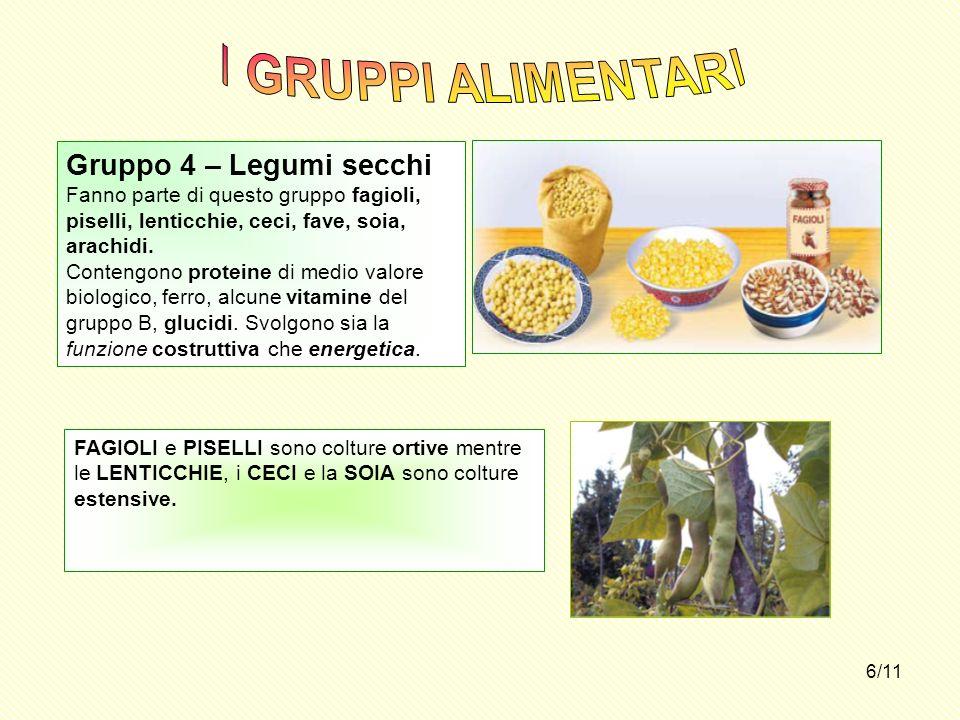 6/11 Gruppo 4 – Legumi secchi Fanno parte di questo gruppo fagioli, piselli, lenticchie, ceci, fave, soia, arachidi. Contengono proteine di medio valo