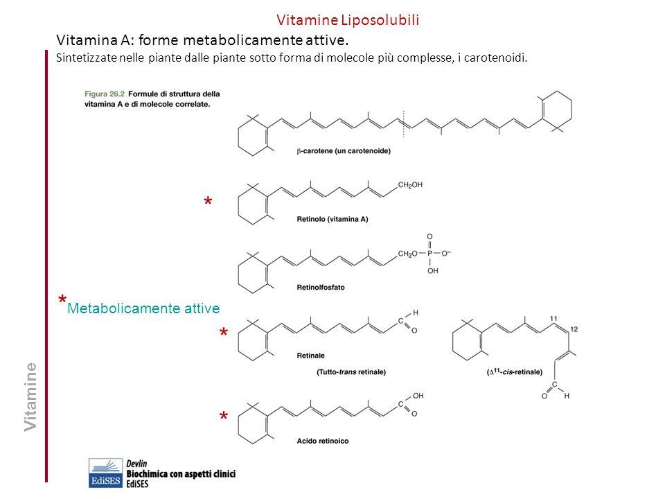 Vitamine Liposolubili Vitamina A: forme metabolicamente attive. Sintetizzate nelle piante dalle piante sotto forma di molecole più complesse, i carote