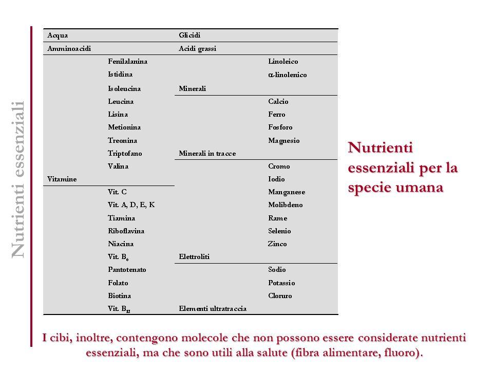 Nutrienti essenziali per la specie umana Nutrienti essenziali I cibi, inoltre, contengono molecole che non possono essere considerate nutrienti essenz