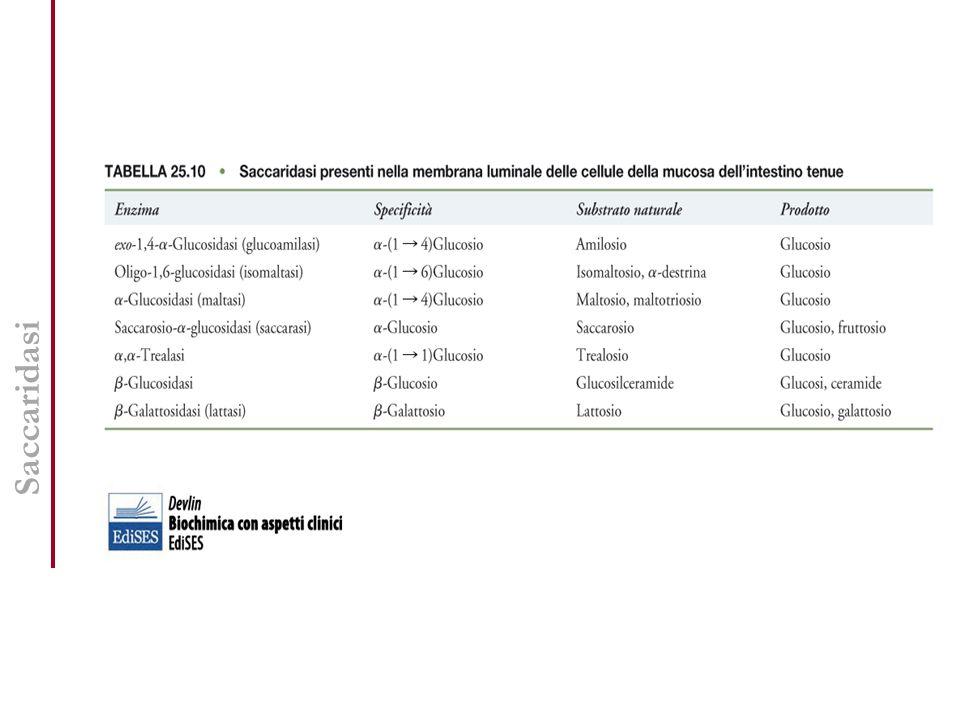 Fabbisogno di nutrienti LARN (Livelli di Assunzione Raccomandati di Nutrienti per la popolazione italiana) Queste tavole nel nostro Paese prendono il nome di LARN (Livelli di Assunzione Raccomandati di Nutrienti per la popolazione italiana) e sono state compilate con il concorso di diversi organismi (SINU, Ministero della Sanità, INRAN).
