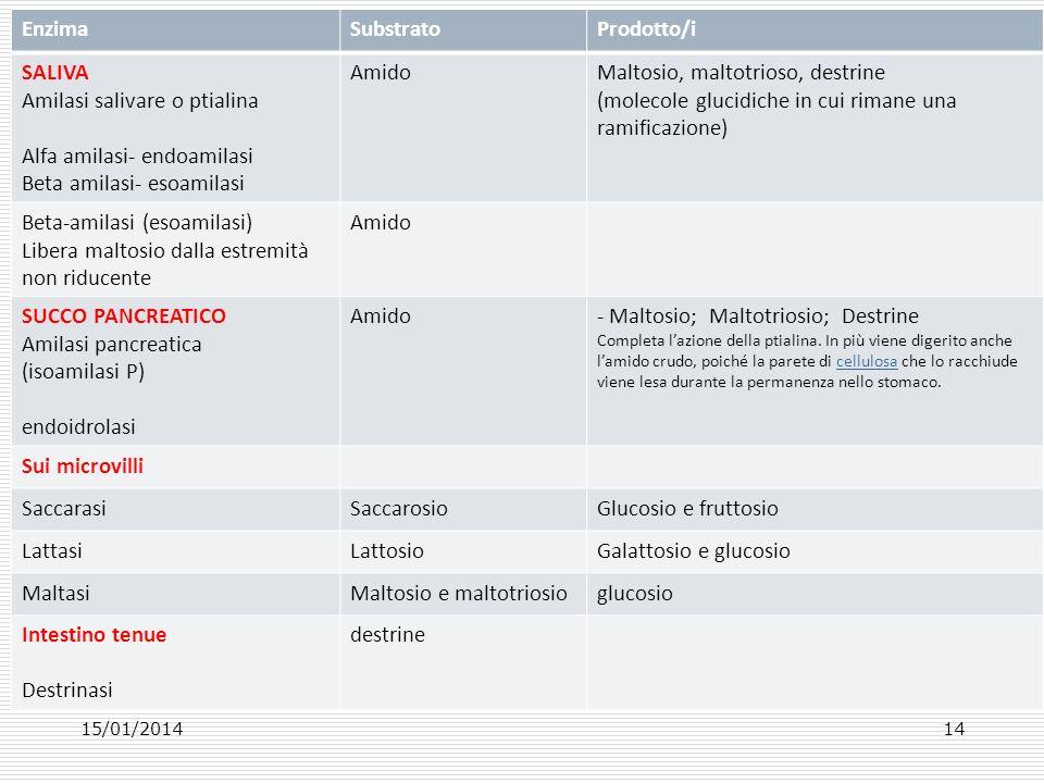 15/01/201414 EnzimaSubstratoProdotto/i SALIVA Amilasi salivare o ptialina Alfa amilasi- endoamilasi Beta amilasi- esoamilasi AmidoMaltosio, maltotrios