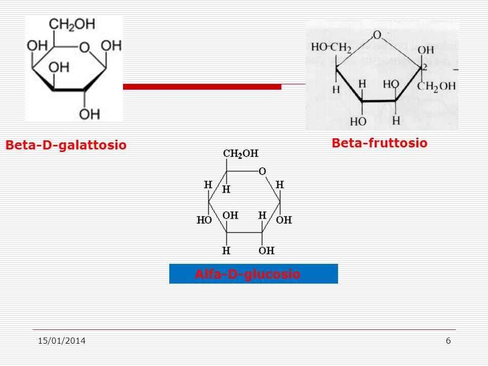 15/01/20146 Alfa-D-glucosio Beta-fruttosio Beta-D-galattosio
