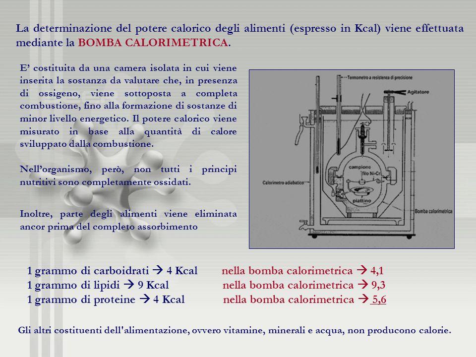 La determinazione del potere calorico degli alimenti (espresso in Kcal) viene effettuata mediante la BOMBA CALORIMETRICA. E costituita da una camera i