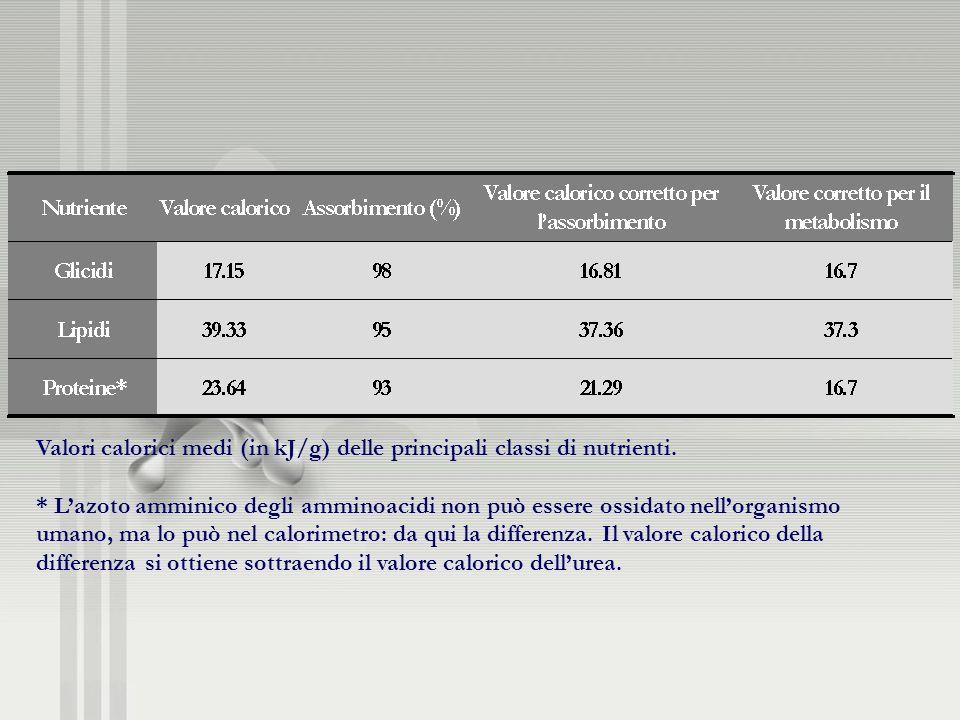 Valori calorici medi (in kJ/g) delle principali classi di nutrienti. * Lazoto amminico degli amminoacidi non può essere ossidato nellorganismo umano,