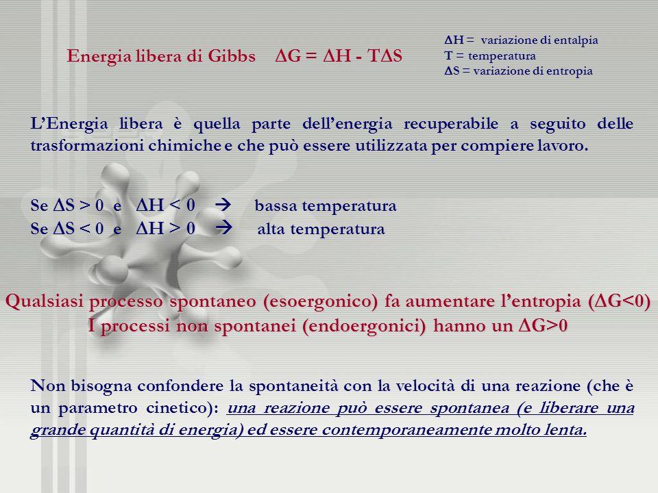 Qualsiasi processo spontaneo (esoergonico) fa aumentare lentropia ( G<0) I processi non spontanei (endoergonici) hanno un G>0 Energia libera di Gibbs