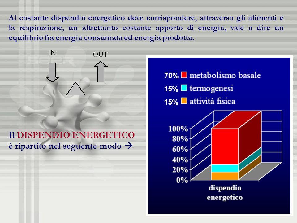 Al costante dispendio energetico deve corrispondere, attraverso gli alimenti e la respirazione, un altrettanto costante apporto di energia, vale a dir