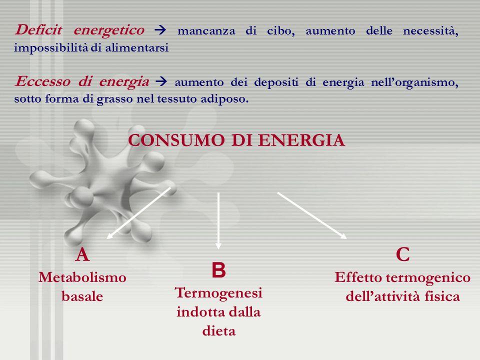 Deficit energetico mancanza di cibo, aumento delle necessità, impossibilità di alimentarsi Eccesso di energia aumento dei depositi di energia nellorga