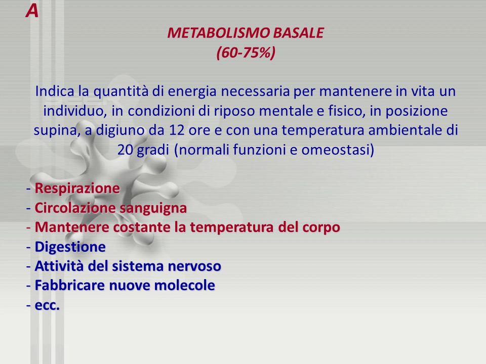 A METABOLISMO BASALE (60-75%) Indica la quantità di energia necessaria per mantenere in vita un individuo, in condizioni di riposo mentale e fisico, i