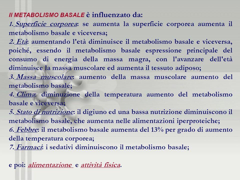 Il METABOLISMO BASALE è influenzato da: 1. Superficie corporea: se aumenta la superficie corporea aumenta il metabolismo basale e viceversa; 2. Età: a