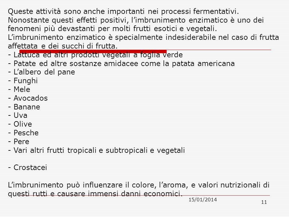 15/01/2014 11 Queste attività sono anche importanti nei processi fermentativi.