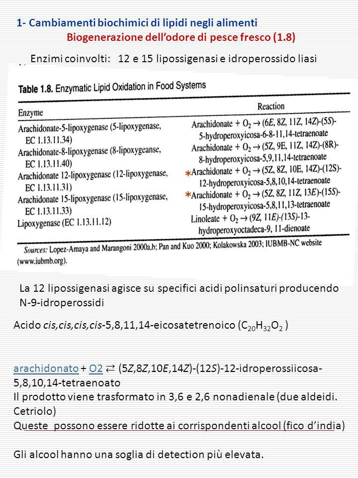 1- Cambiamenti biochimici di lipidi negli alimenti Biogenerazione dellodore di pesce fresco (1.8) Enzimi coinvolti: 12 e 15 lipossigenasi e idroperossido liasi * * La 12 lipossigenasi agisce su specifici acidi polinsaturi producendo N-9-idroperossidi Acido cis,cis,cis,cis-5,8,11,14-eicosatetrenoico (C 20 H 32 O 2 ) arachidonatoarachidonato + O2 (5Z,8Z,10E,14Z)-(12S)-12-idroperossiicosa- 5,8,10,14-tetraenoatoO2 Il prodotto viene trasformato in 3,6 e 2,6 nonadienale (due aldeidi.